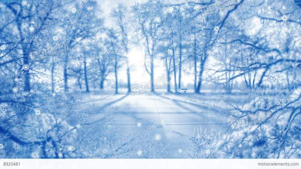 Winter Background Animation Loop Stock Animation 8920481