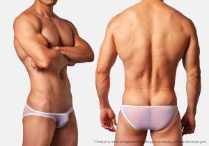 translucent,mesh,low waist,briefs,underwear