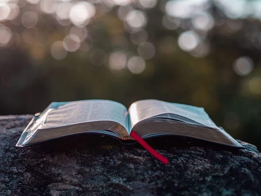 하나님 말씀을 찾는 것은 하나님을 찾는 것 성경읽기
