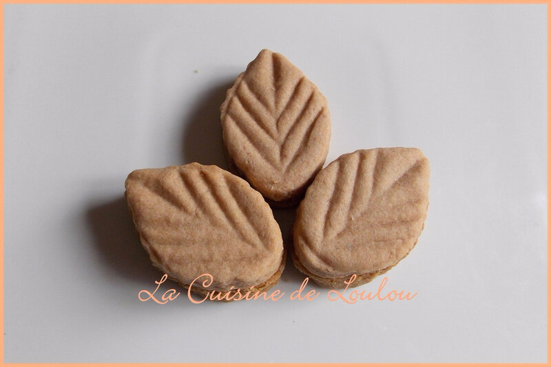 feuilles-aux-speculoos3