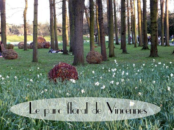 parc-floral-vincennes-printemps-fleurs-jonquilles-magnolias (26)