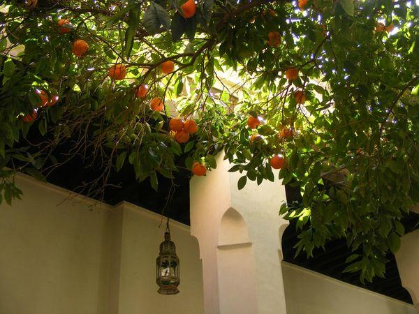 maroc-marrakech-musee-dar-si-said (18)
