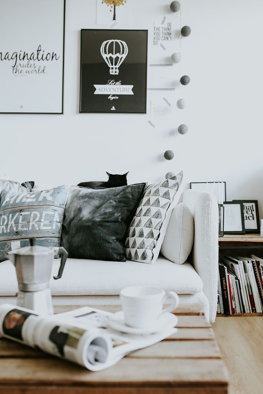 Interior Sofa Magazines Modern Table Cat Pillows Home