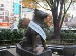 Statut Hachiko