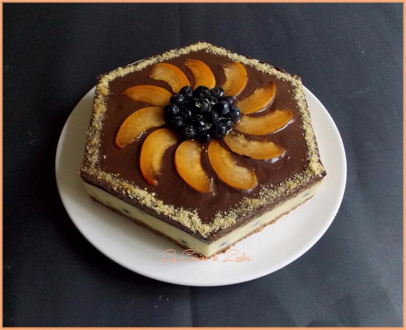 entremet-myrtilles-abricots2