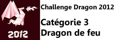 Challenge Dragon de feu
