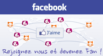 Compte facebook Direct-Vet.be