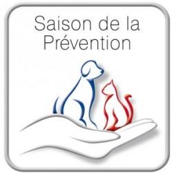 Saison de la prevention 2013