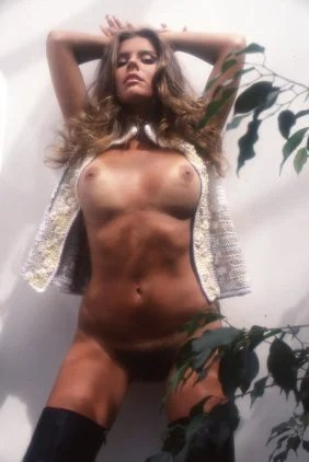 penthouse pet year vintage