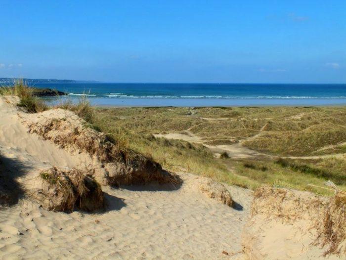 dunes-bretagne-finistere-baie-douarnenez-sainte-anne-la-palud-faune-flore-promenade-sortie-vacances (13)