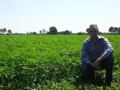 Fabrizio Giamberini, empresário fundador da The Latin America Hemp Trading, que começará a plantar cânhamo em escala industrial no Uruguai Foto: Denise Mota / Especial para Terra