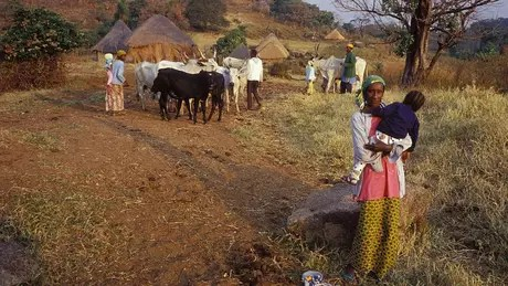 The victims lived in villages near Lake Nyos, near the border between Cameroon and Nigeria