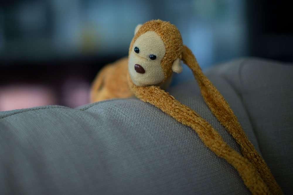 Calgary Web Design - Monkey with long hands