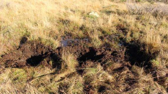 Resultatet av degans fjelltur: Tre store krater, hvor man kan få plass til en mann i hver av dem. (Foto: Ludvig Løkholm Lewin, NRK)