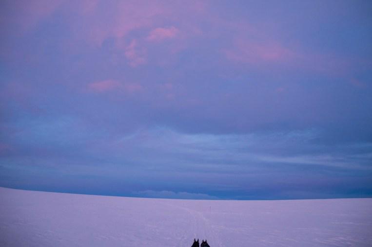 Vakkert og vilt. Hundespannene kjører gjennom mange ulike landskap på Finnmarksløpet.