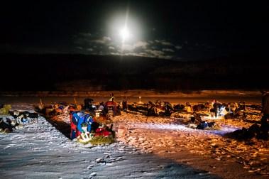Sjekkpunkt Jergul. Alle spannene ligger på rekke og rad. Hver kjører får utdelt halm som hundene kan ligge på og må hente vann i et hull i isen.