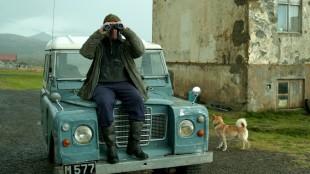 Nysgjerrig nabo følger med i Om hester og menn (Foto: Europafilm).