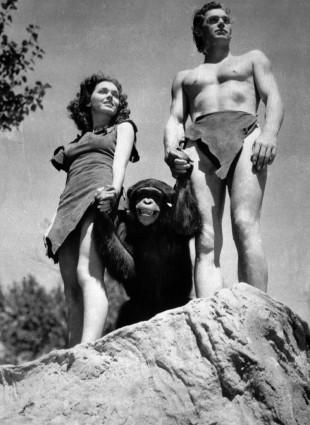 Johnny Weissmuller, som Tarzan, Maureen O'Sullivan som Jane, og sjimpansen Cheetah, i Tarzan the Ape Man fra 1932. (Foto:  AP Photo/ho, File).