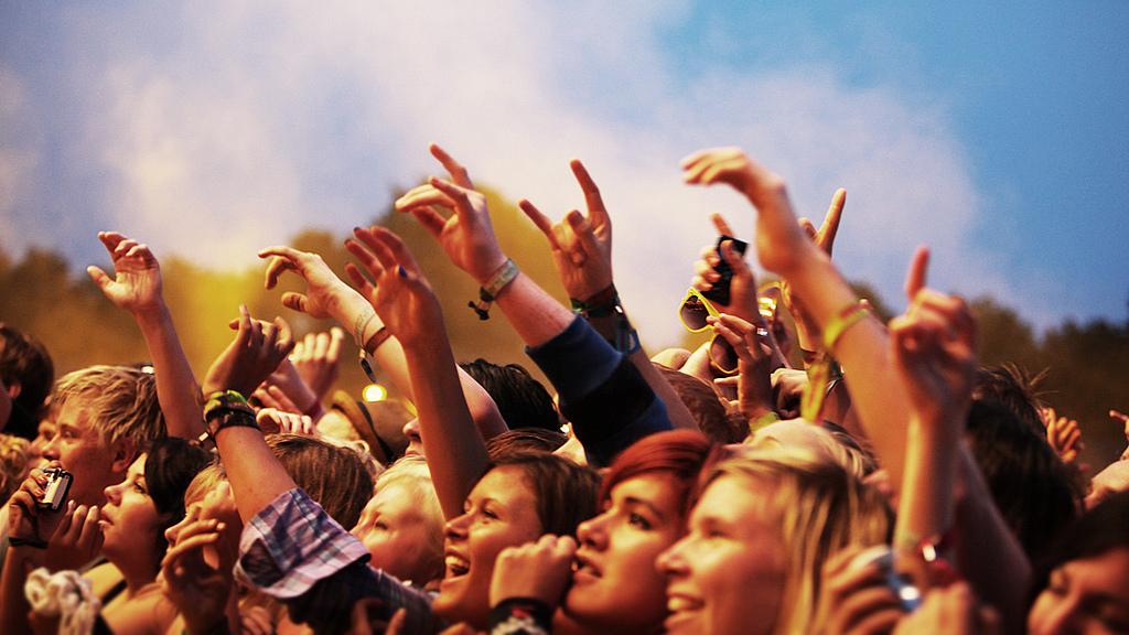 Musefans kunne stå trygt under Hovefestivalen i 2010. (Foto: Kim Erlandsen/NRKP3).