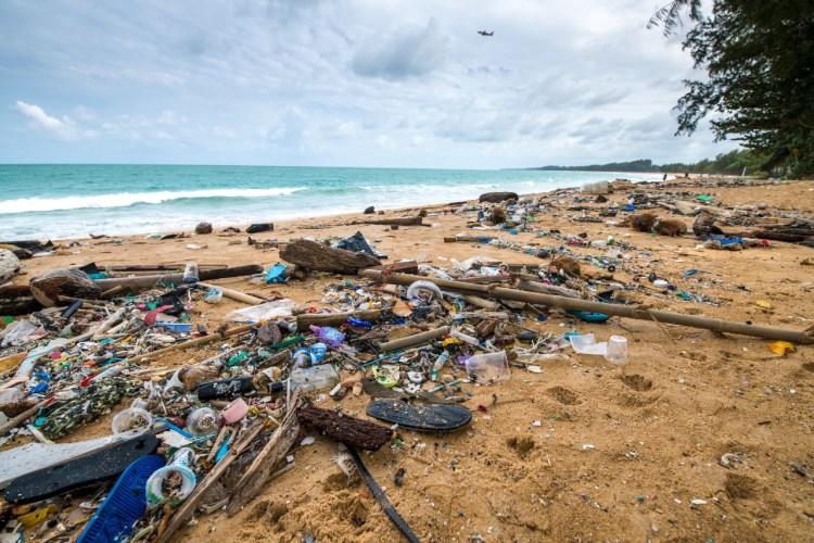 PLAST I HAVET: I år går alle aksjon-pengene til WWF Verdens naturfond. Foto: Kittisun Kittayacharoenpong, Getty Images