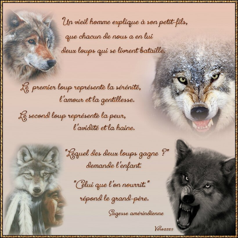 """Résultat de recherche d'images pour """"fable les deux loups"""""""