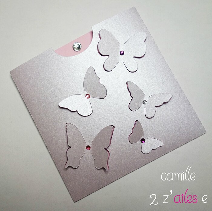 camille 2 z ailes