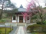Temple de Ryoan-ji