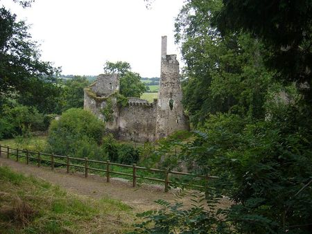 Ruines_du_chateau_de_Joachim_du_Bellay