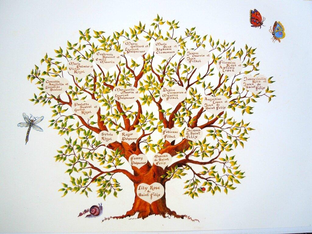 Arbre Genealogique Fabienne