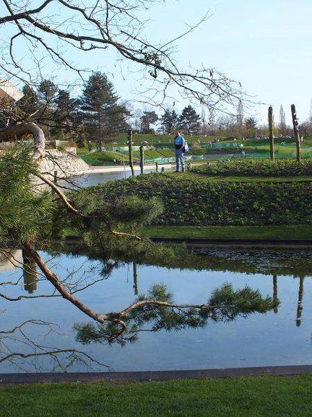 parc-floral-vincennes-printemps-fleurs-jonquilles-magnolias (2)