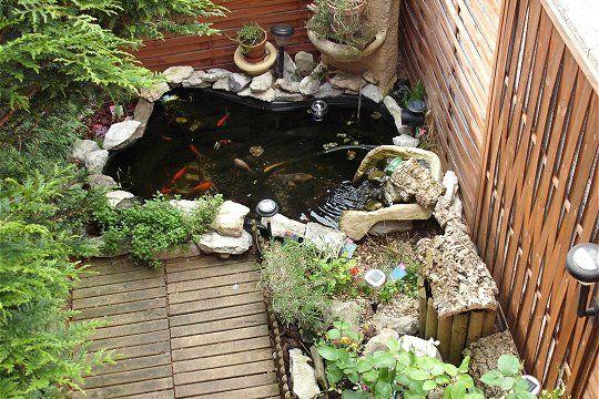 un bassin de jardin papa bricole ca