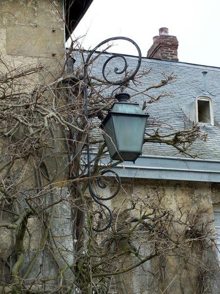 Jardin-des-plantes-Rouen-serre-fleurs-monet (16)