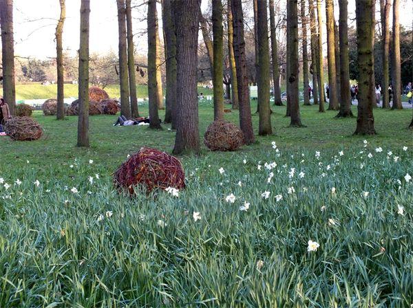parc-floral-vincennes-printemps-fleurs-jonquilles-magnolias (23)