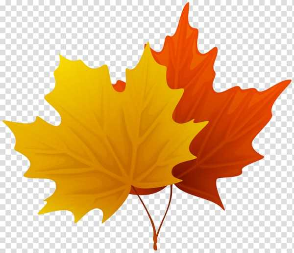 fall leaves png # 11