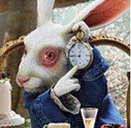 白兔先生_360百科