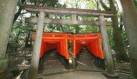 Fushimi Inari-Double Entrée