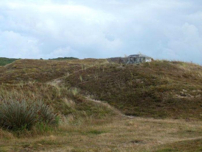 dunes-bretagne-finistere-baie-douarnenez-sainte-anne-la-palud-faune-flore-promenade-sortie-vacances (3)