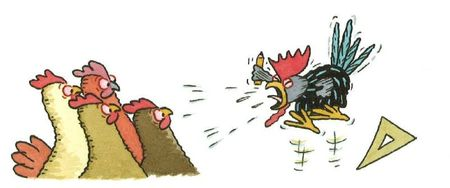 poules-coq2