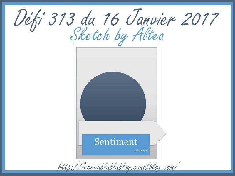 Défi 313
