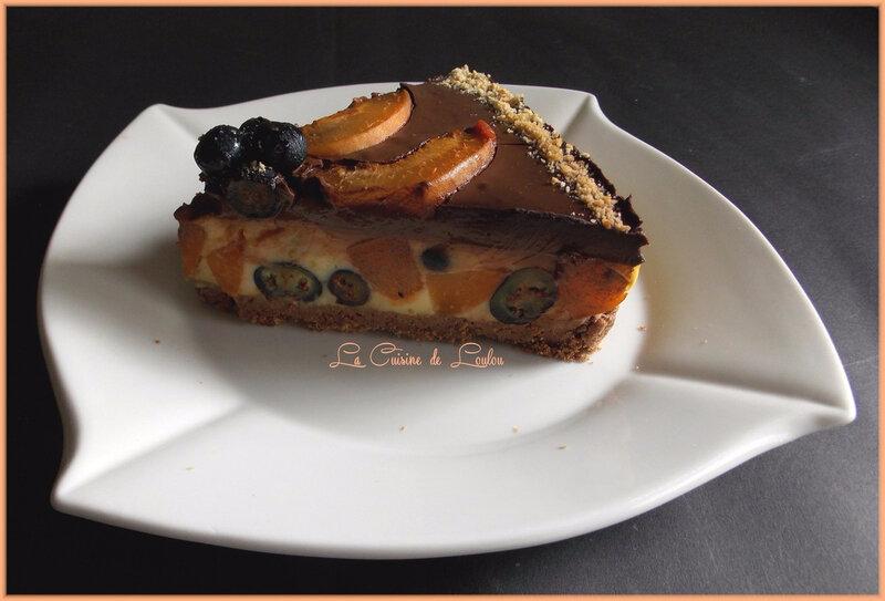 entremet-myrtilles-abricots3