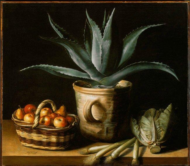 Nature morte à l' Aloe Vera , hst , signée , 97,6 x 110,8cm - collection particulière