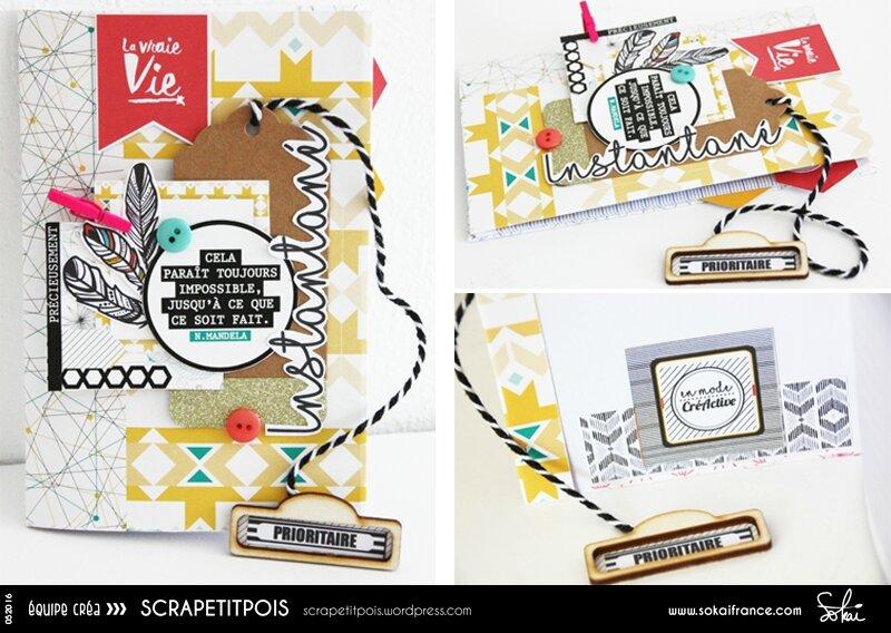 Scrapetitpois-Sokai-052016-PL02