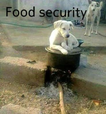 food security in juba