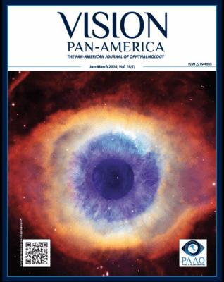 Vision Pan-America vol. 15 cover
