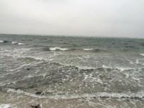 Østsiden hvorfra vinden stod direkte på. Resultatet af 11 m/s.