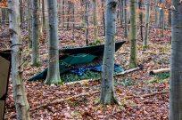 Et andet shelter. Her er gran lagt direkte ovenpå jorden, herefter sovepose og igen sov godt!