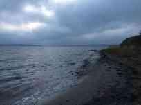 Stranden ved shelterpladsen. Et dejligt sted hvor vi spottede Marsvin.