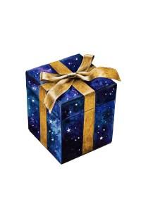 gift, christmas, celebrate