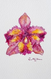 orchid-painting-by-singapore-artist-prabhakara-jimmy-quek-512x800