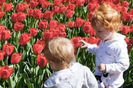 Kids with Tulips